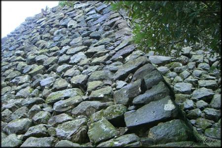 東ノ丸北面石垣