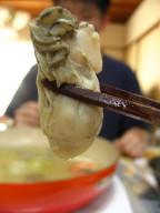 牡蠣だべさ~♪