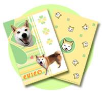 柴犬クリアファイルプレゼント