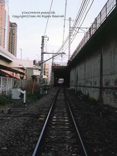 2007_0500_15.jpg