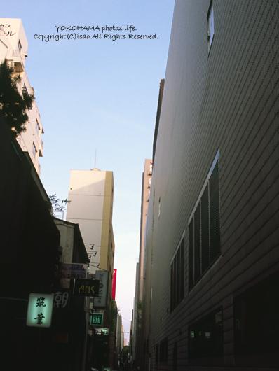 2007_0500_17.jpg