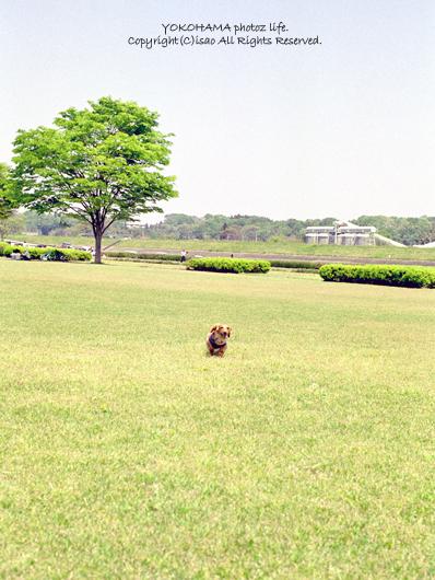 2007_0518_03.jpg