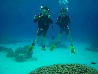 ダイビング体験 ラチャヤイ島
