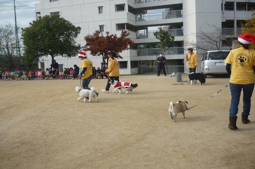 2011 12 06_セラピーの日_2185