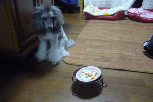 2012 01 02_みらん2歳のお誕生日_2213
