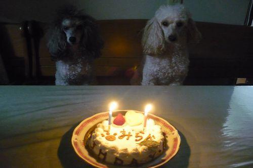 2012 01 02_みらん2歳のお誕生日_2210