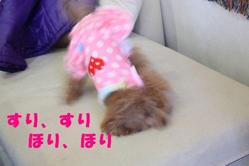 2012 01 07_合同お誕生会inWANBANA_2249