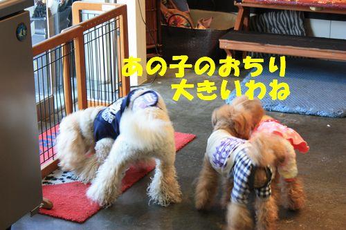 2012 01 07_合同お誕生会inWANBANA_2260