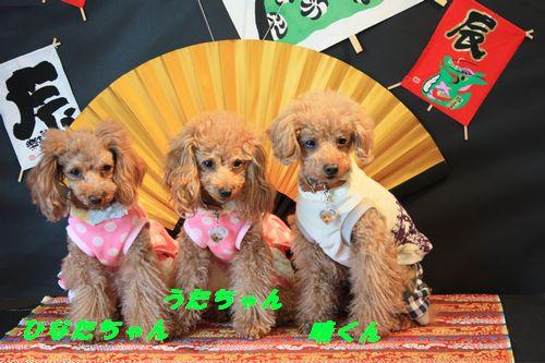 2012 01 07_合同お誕生会inWANBANA_2273
