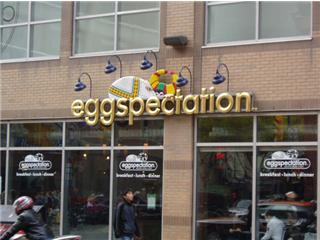 eggspectation3.jpg