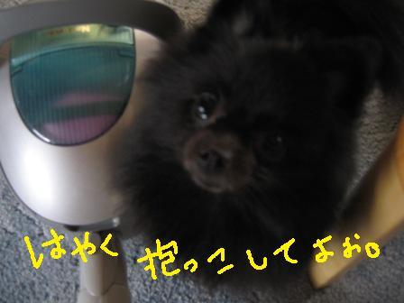 IMG_2270.jpg