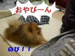 ブログ 015new