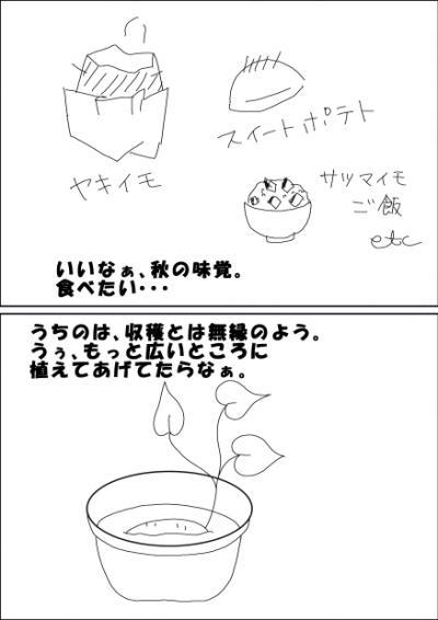 imohori2.jpg