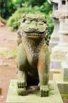 シーサー 九州 狛犬