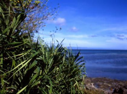 siquijor shore