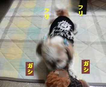 2011050711570001.jpg