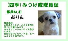 10039797385_s.jpg