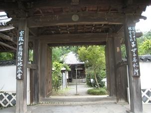 地蔵寺の古代ハス