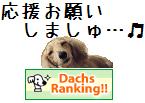 rankingシイ2
