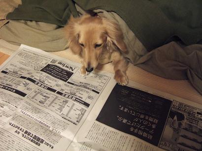 新聞よむよむ