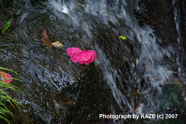 花沢の里の川の流れ