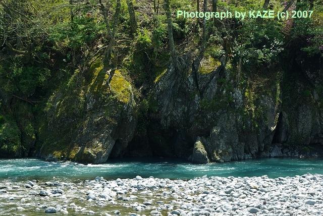 大井川の自然