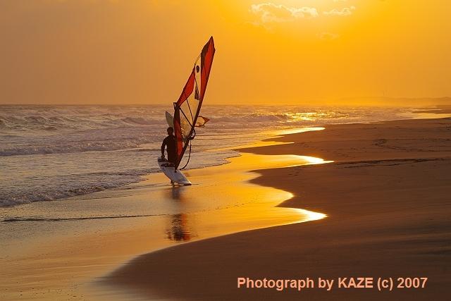 金色の砂浜