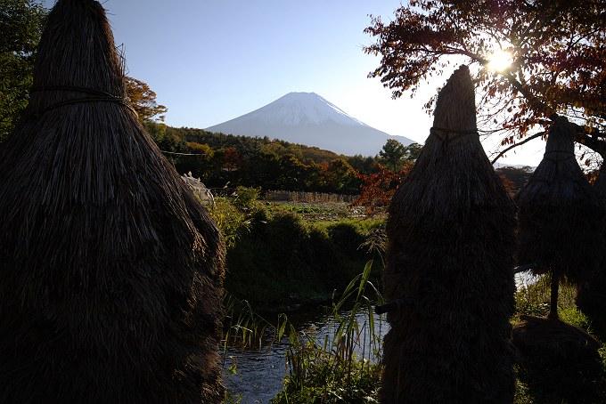 富士山に訪れる秋