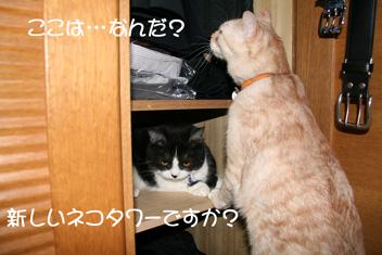 2007_06190087.jpg