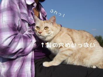DSCF0077.jpg