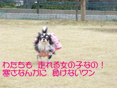 CIMG0726.jpg