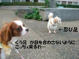 20070528195158.jpg