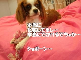 20070601152515.jpg
