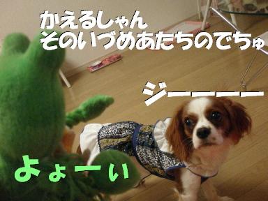 20070611131019.jpg