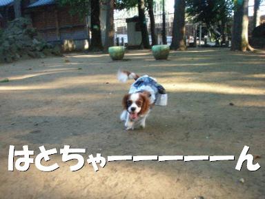 20070621193946.jpg