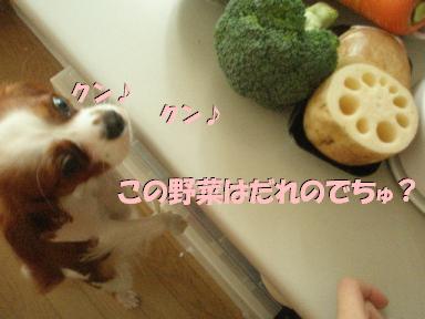 20070627194721.jpg