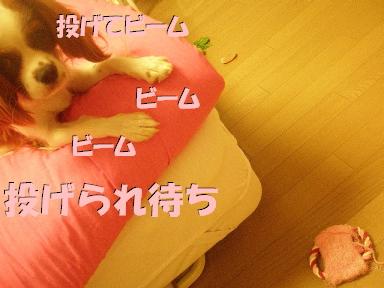 20070720144731.jpg