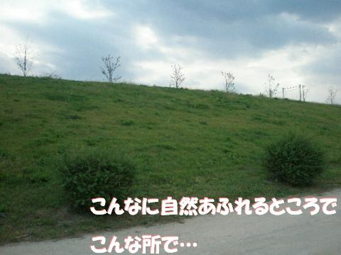 20071014233646.jpg