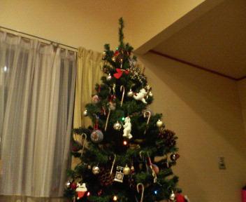 我家で一番のクリスマスツリー