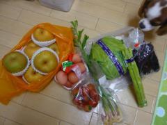 地場野菜たち