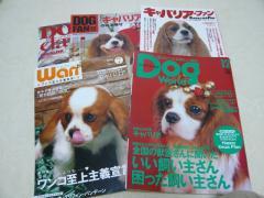 きゃば特集雑誌