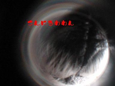 20071024150654.jpg