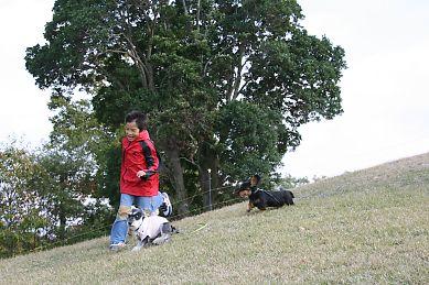 20071112150843.jpg