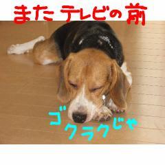 gokuraku.jpg