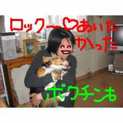 ha-to.jpg