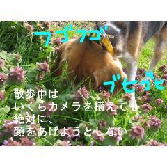 hugobuhi.jpg