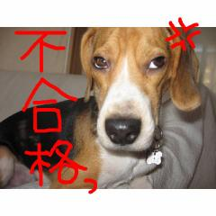 hugoukaku.jpg