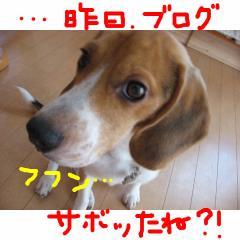 huhun_20070924134410.jpg