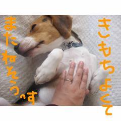 kimotiyoi.jpg
