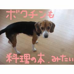 mitaiyo.jpg